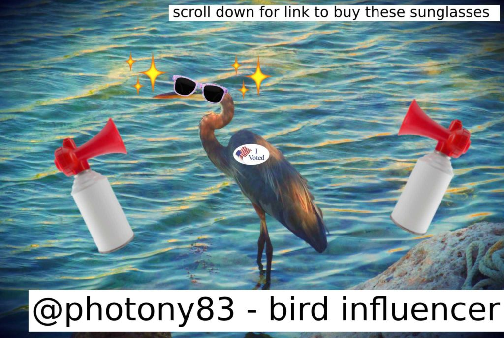 "A bird wearing an ""I voted sticker"" and sunglasses, with accompanying air horns and labels proclaiming my social media brilliance."